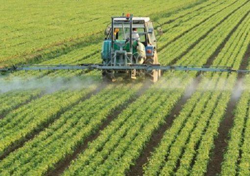 ¿Que son los fungicidas?